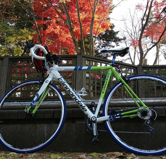 2012-11-24 16.10.55bbb.jpg